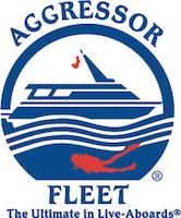 AFL Logo PROCESS FIN